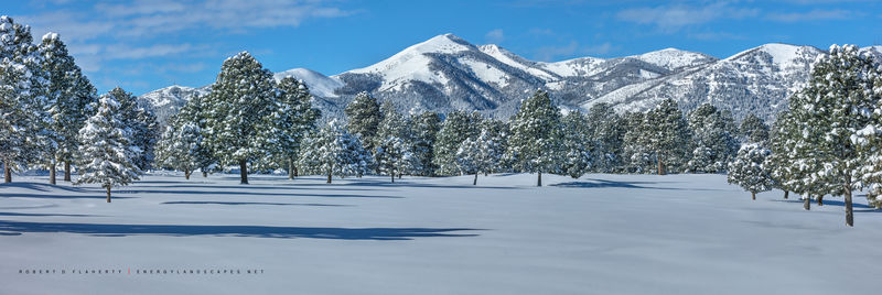Winter, Ruidoso, snow, New Mexico, Christmas 2018, 2018, high resolution, panorama, snowstorm, snowshoes, sense of depth