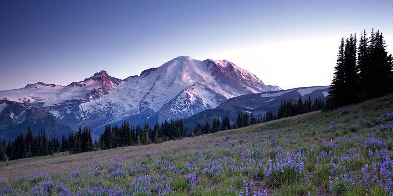 Rainier, Mount Rainier National Park, Rainier