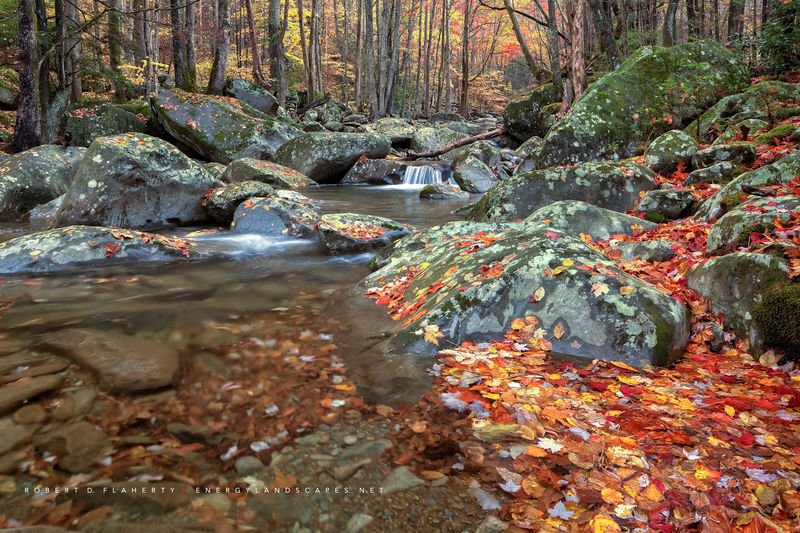 river, Great Smoky Mountain National Park, Little Pigeon River, New Mexico, Ruidoso New Mexico,  studio gallery, Topside Gallery,  Autumn, Halloween, Green Briar, October, fine art photography